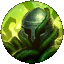 The Rune Overgrowth
